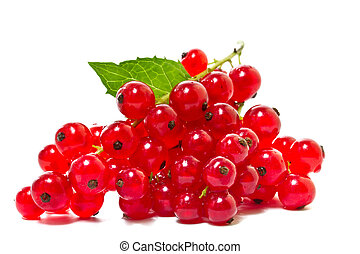 Red currants on a white background.