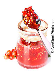 Red current jam on white background dessert