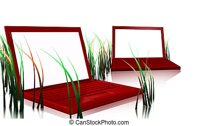 red designer laptops and grass