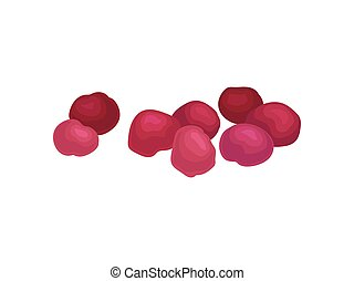 Red dried cherries. Realistic vector illustration on white ...