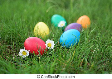 Red Easter egg in a grass