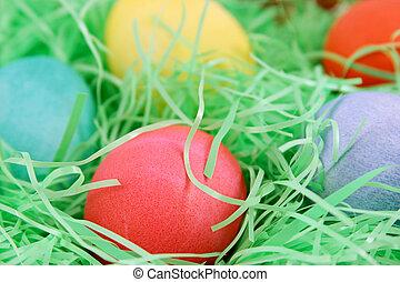 Red Easter Egg Macro