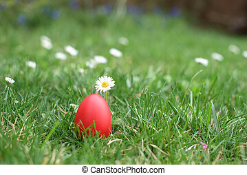 Red Easter egg next to daisy in a grass