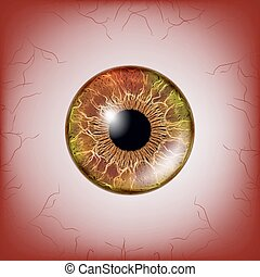 Red Eye. Scary Bloody Realistic Eyeballs. Spooky Human Eyeball With Grunge Blood Splatter. Vector