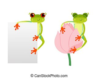 Red eyed frog with blank background. Tree frog on lotus flower. Cute animal. Vector 10 EPS illustration. Isolated on white