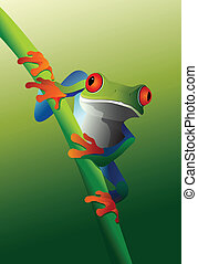 Red-Eyed Tree Frog on Vine - An illustration of a Red-Eyed...