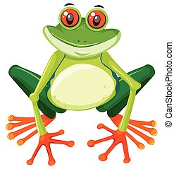 Red eyed tree frog on white background illustration