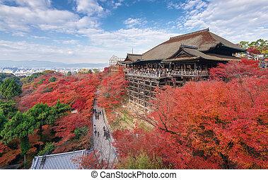 Red fall leaves at Kiyomizu-dera temple in Kyoto, Japan