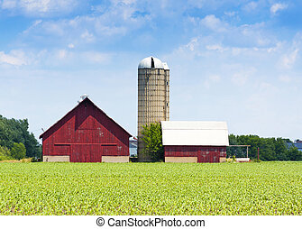 red wooden farm with tall silos