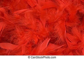 Red feathers - Background of red feathers, soft focus.