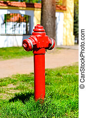 Red fire hydrant on green glade, Bialystok, Poland