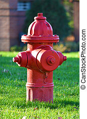 Red fire hydrant - red fire hydrant in green grass