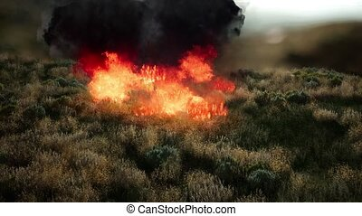 red fire in dry herb