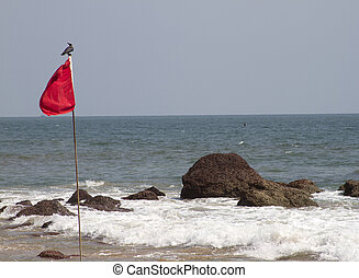 Red flag with the bird sitting on it. GOA India Beach