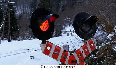 Red Flashing Traffic Light at a Railway Crossing in a Forest in Winter. Train Passing By