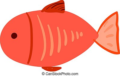 Red flat fish, illustration, vector on white background.