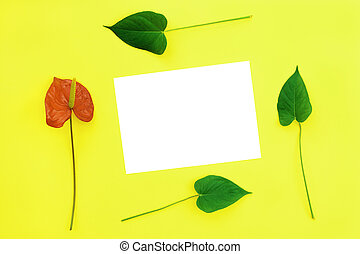 Red flower and paper.