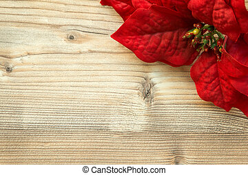 Red flower for Christmas decoration