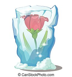 Red flower frozen in ice isolated on a white background. ...