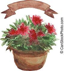 Red Flower in a flowerpot, beige ribbon set on white...