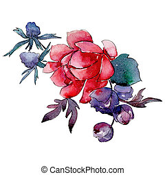 Red flower. Isolated flower illustration element. Background illustration set. Watercolour drawing aquarelle bouquet.