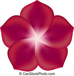 Red Flower, Isolated On White Background. Vector Illustration