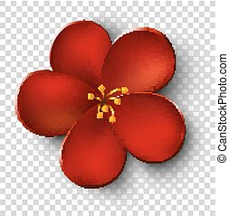 red flower on transparent background. vector illustration