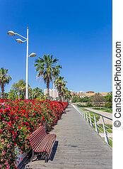 Red flowers and bench on the Puente de las flores bridge in Valencia