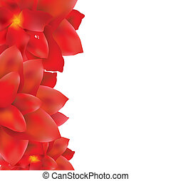 Red Flowers Border