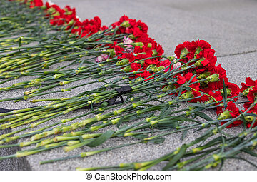 red flowers in memory of victims in the world war on victory day on 9 may, Grave of Unknown soldier, memorial to fallen soldiers.day of victory, bloody wars.red carnations,Great Patriotic War.