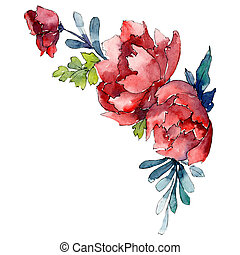 Red flowers. Isolated flower illustration element. Background illustration set. Watercolour drawing aquarelle bouquet.
