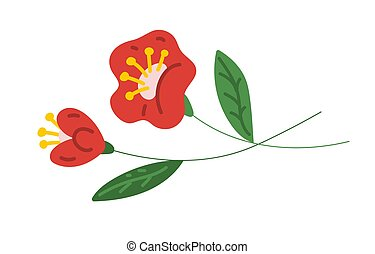 Red flowers isolated on a white background