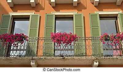 Red flowers on balcony