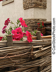 red flowers on hurdle