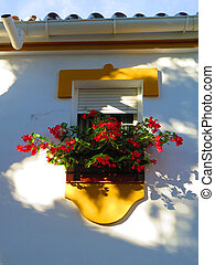 Red flowers on small balcony in Andalusian village
