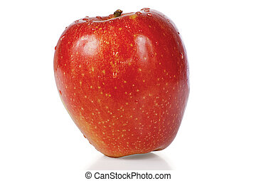 Red fresh apple with drops of water on a white background