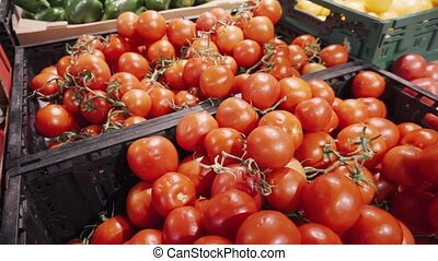 Red fresh organic tomatoes on branch in basket on a...