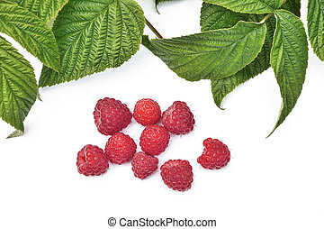 Red fresh raspberry with green leaves isolated on white background