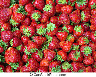 Red fresh strawberries on the market, top view.