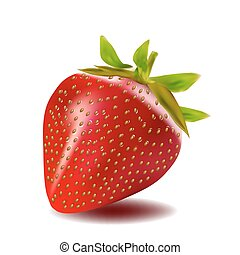 red fresh strawberry isolated