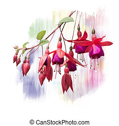 Red Fuchsia Flowers watercolor