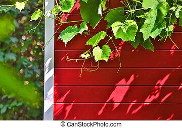 red garden hut summer background