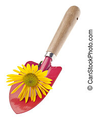 Red Garden Shovel with Daisy