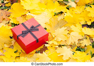 red gift box with bow in yellow leaves