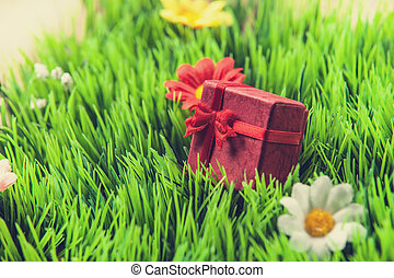 Red gift on a green grass