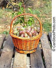 Red grape in brown wicker basket