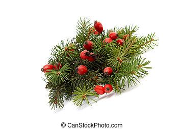 Red-green christmas arragement