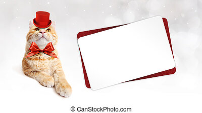 red greeting card with ginger cat isolated on white