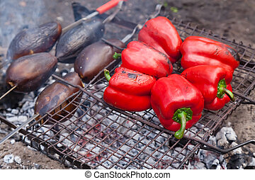 Red grilled pepper and eggplants on bbq