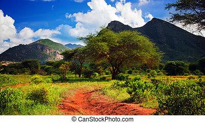 Red ground road, bush with savanna. Tsavo West, Kenya,...